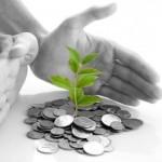 financial_stewardship